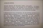 VIBRACIONES PROHIBIDAS SALA 1 CENSURA MORAL (11)